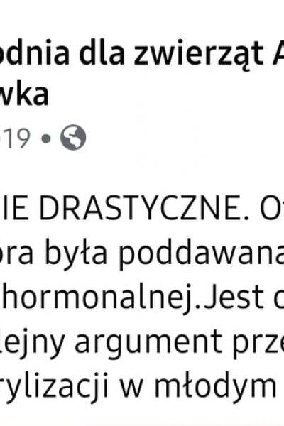 Gabinet wet A.T. Pokrzywka