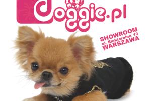 www.doggie.pl